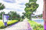 精華町を南北に走る幹線道路「山手幹線」の役場庁舎前付近の歩道風景
